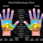 Learning from a Hand Reflexology Chart